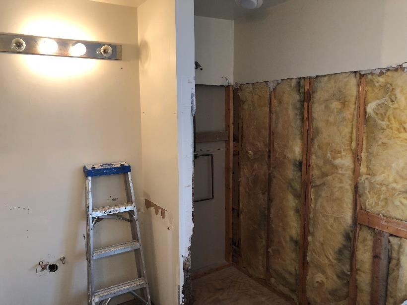 Bathroom walls removal