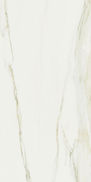 Classici Calacatta Gold Glossy 32 x 71