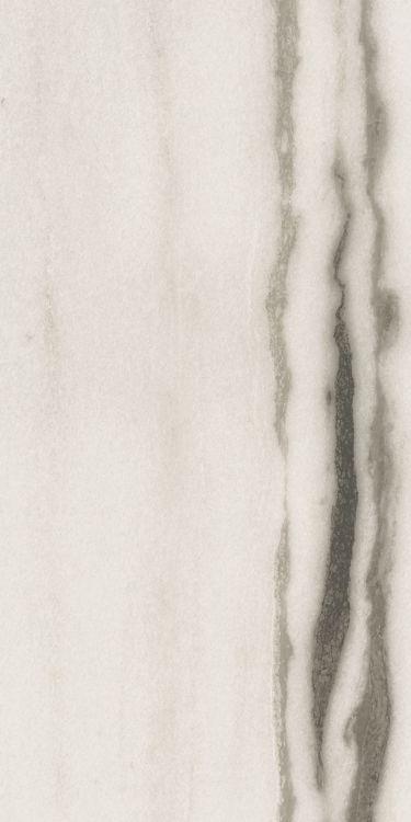 Prexious White Fantasy Matte 12 x 24