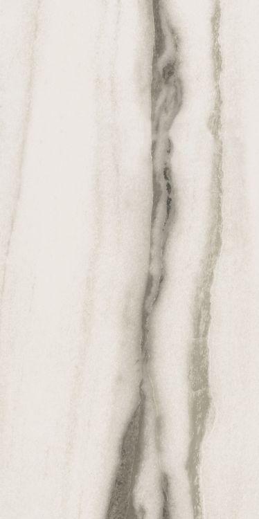 Prexious White Fantasy Matte 24 x 48